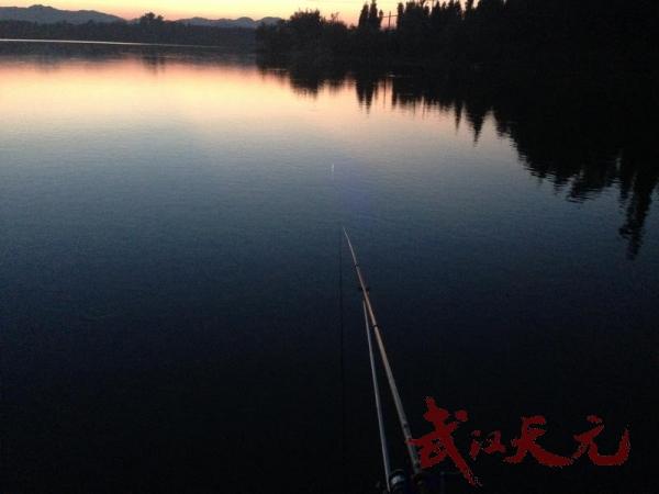 夜钓景色2 - 我的相册 - 武汉天元钓鱼论坛 - 钓鱼